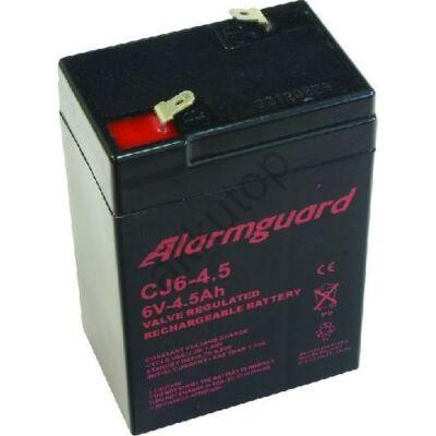 ALARMGUARD 6V - 4,5 Ah