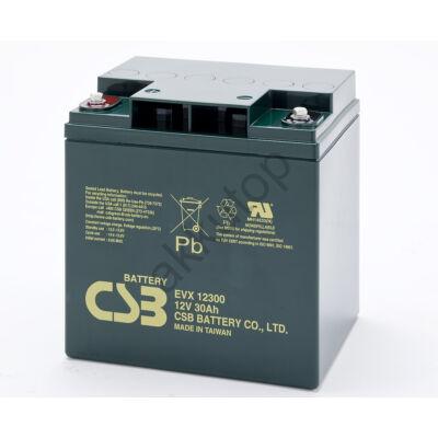 CSB-EVX 12V 30Ah